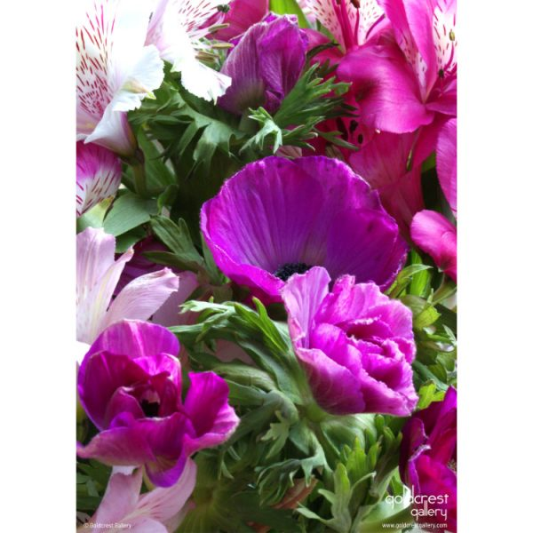 Back of greeting card with pink anemones and lisianthus