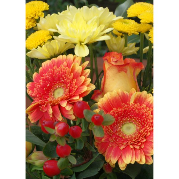 Front of double view greetings card with photo of bunch of yellow and orange red chrysanthemums and red berries