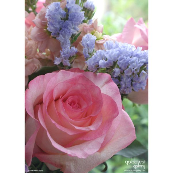 Back of greeting card with photo of pink rose and purple statice flowers