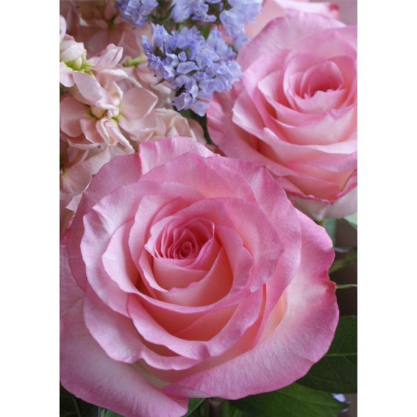Front of wrap-around greetings card with closeup photo of pink roses, purple statice and peach stocks