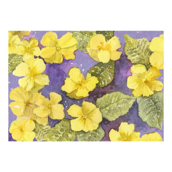 Greeting card design of yellow primroses and green leaves on a purple background, landscape